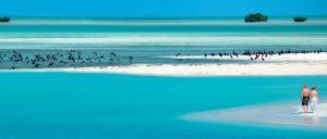 Privilegiado por la naturaleza, la pequeña isla cubana de Cayo Largo, en el mar Caribe, muestra una belleza insuperable en su entorno natural y en sus fondos marinos, ideales para el buceo.