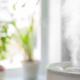 Generador ozono domestico